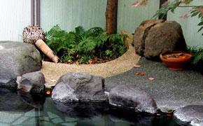 クアハウス石橋旅館の温泉