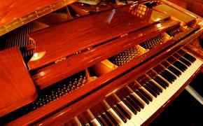 ピアノは誰でも自由に弾くことができるそうです!