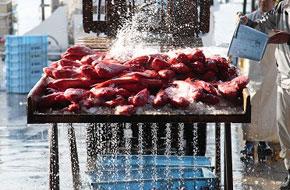 下田魚市場、金目鯛の競り