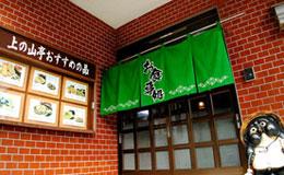 Uenoyamatei