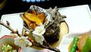 洗田の懐石料理
