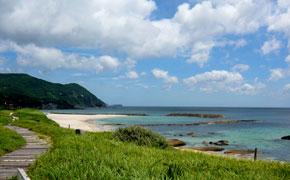 唯一バーベキューが許されている白浜中央海水浴場