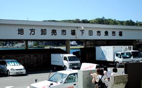 目の前には下田の魚市場があります