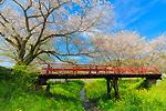 春に映える赤い橋